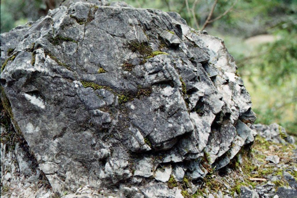 Stein im Grünem